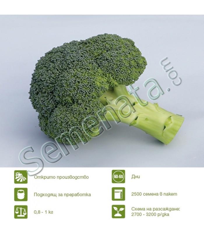seeds broccoli Besty