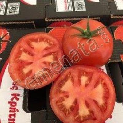 Хибридни семена домати Амарилис (Amaryllis)