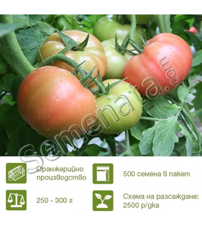 Розови домати Манекро (Manecro)