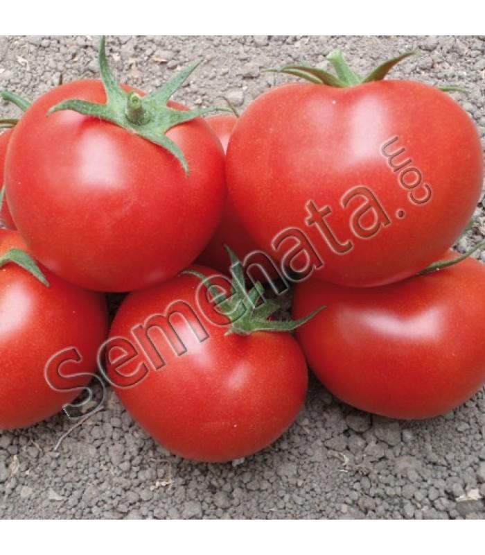 Семена домати Берно (Berno)