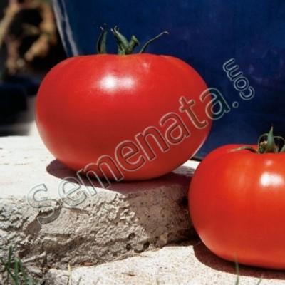 Хибридни семена домати Леонора ( Leonora )