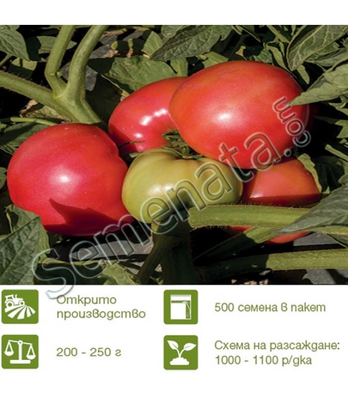 Розови домати Пинк а Лишъс ( Pink a Licious )