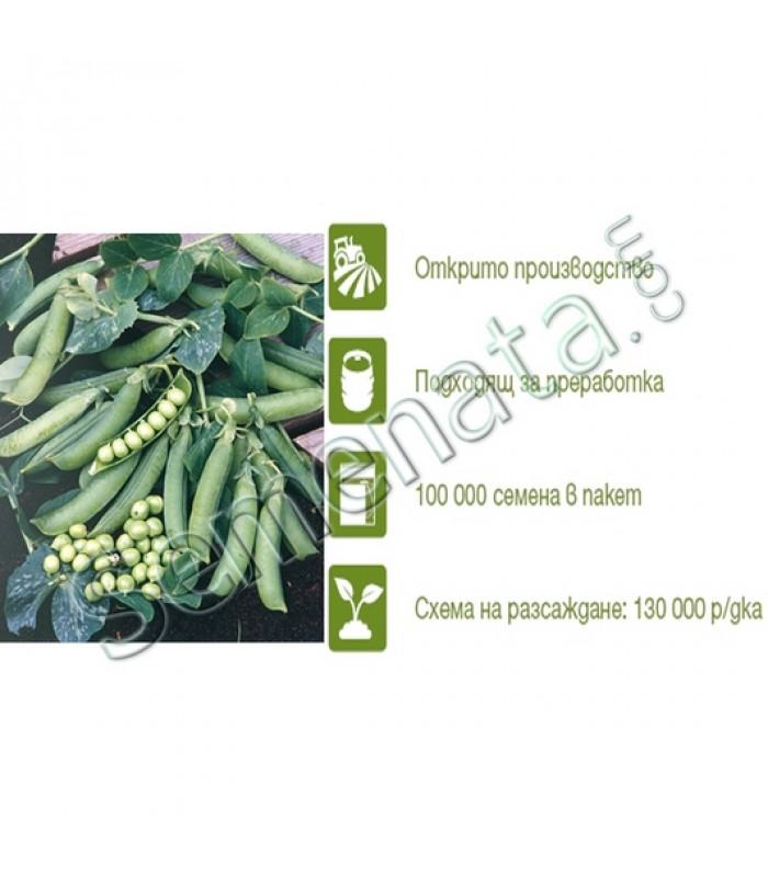 Семена за Грах Преладо (Prelado)