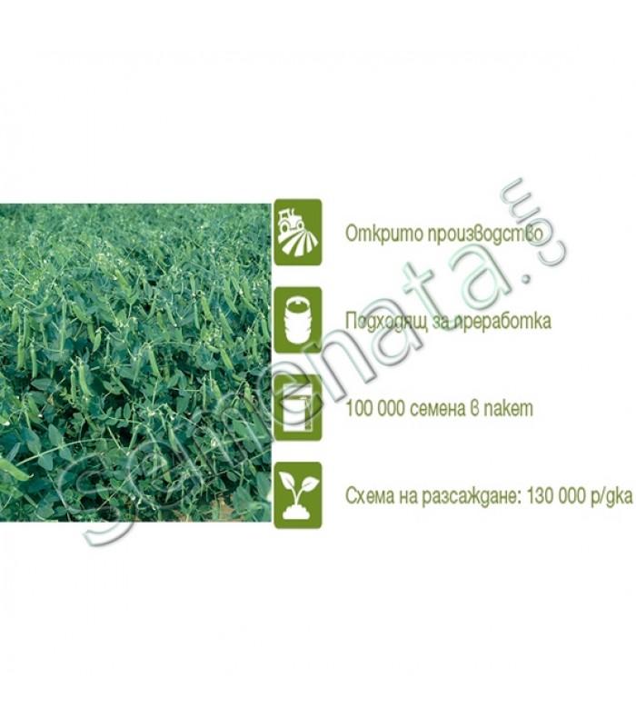 Семена за Грах Скинадо (Skinado)