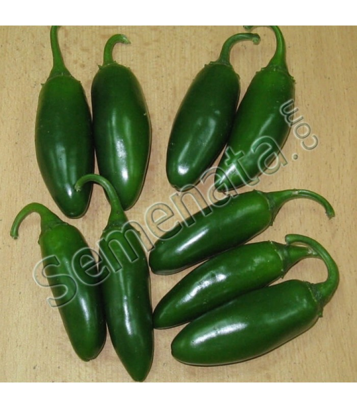 Семена за пипер Форажидо (Forajido)