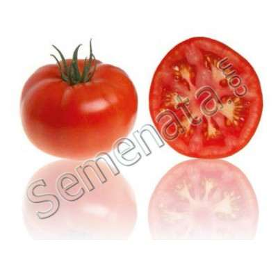 домати Америго