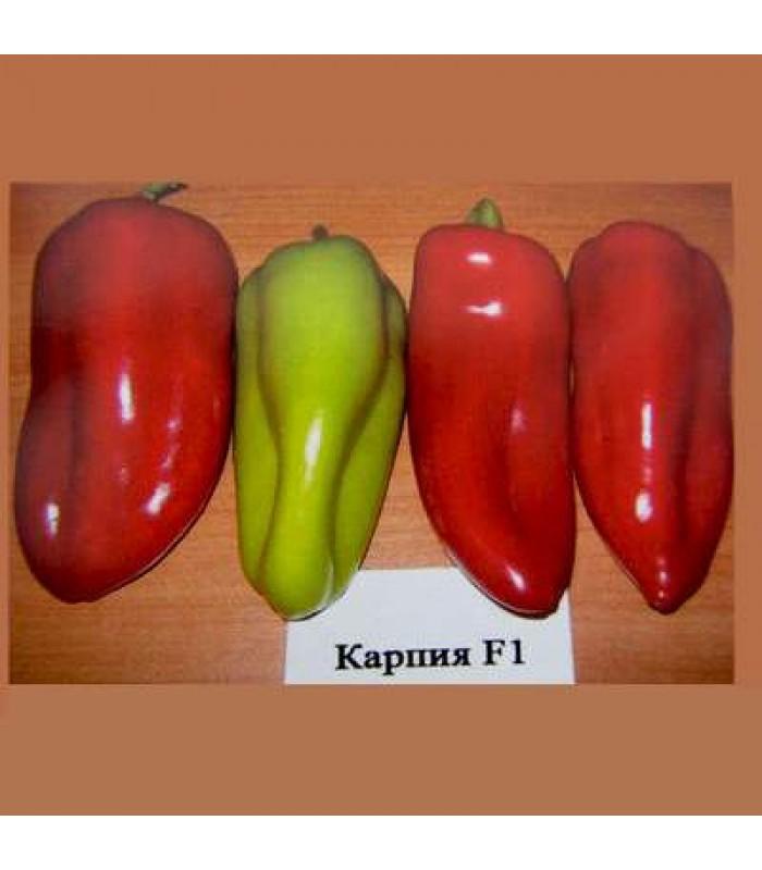 Карпия (Karpia)