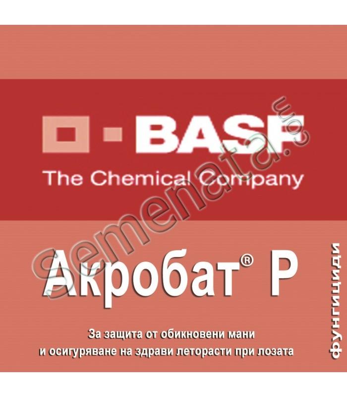 Акробат-Р(Acrobat-R)