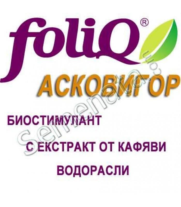 Асковигор (Ascovigor)